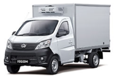 camion7